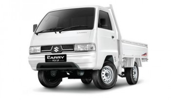 carry-pu-wd-white